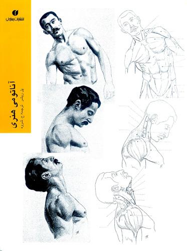 م کاشی نرم افزار نگارخانه ایرانی - آناتومی هنری