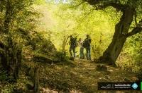 گزارش تصویری تور یکروزه جنگل الیمستان